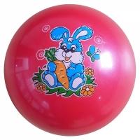 Мяч силиконовый d 200 мм G1
