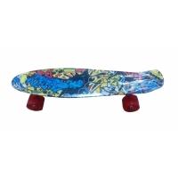 Скейтборд AMIGO SPORT ECOLINE пластм.