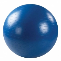 Мяч гимнастический FMA65 32286