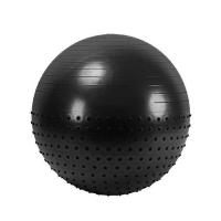 Мяч гимнастический FBX55 32361